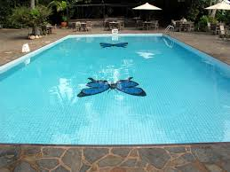 When You Should Close Your Inground Pool?